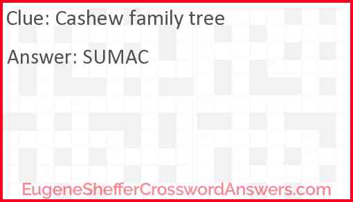 Cashew family tree Answer