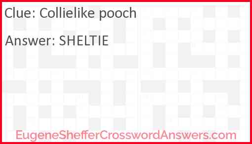 Collielike pooch Answer