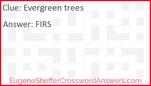 Evergreen trees Answer