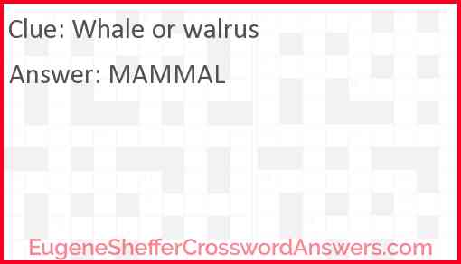 Whale or walrus Answer