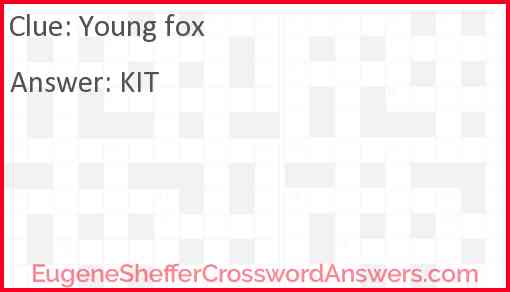 Young fox Answer